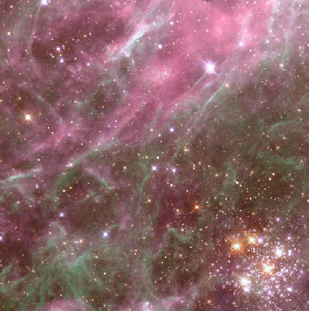 Hodge 301 in the Tarantula Nebula